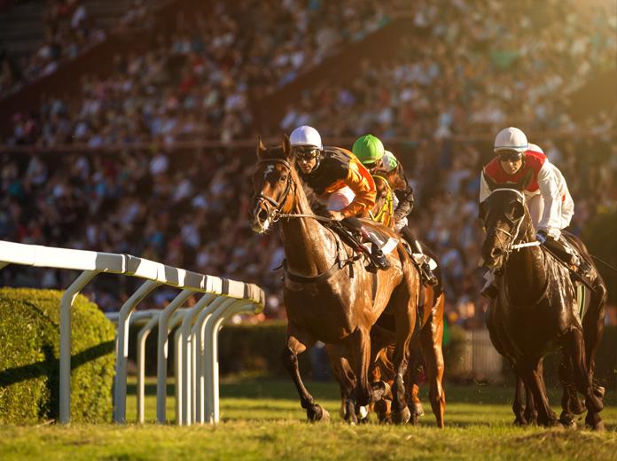carreras de caballos reglas